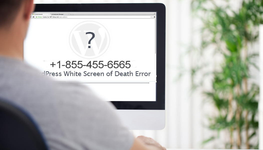 "How to fix ""White Screen of Death"" Error in WordPress"